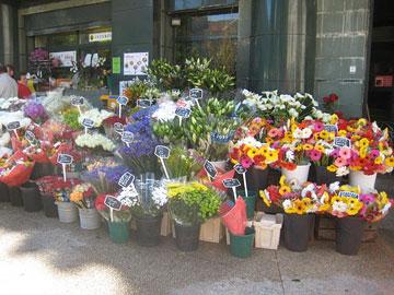 Avignon flower stall