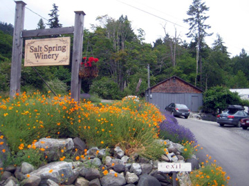 Salt Spring Winery
