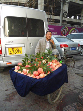Peach seller, Lanzhou
